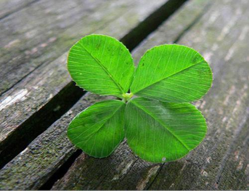 Tú decides: buena suerte … mala suerte